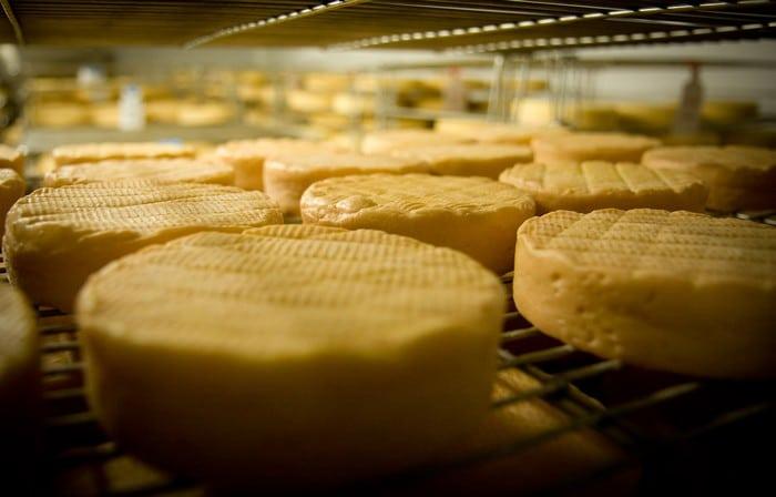 Le munster et le géromé, 2 fromages mais une seule région !